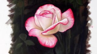 Como Pintar : Rosa ( Passo a Passo )